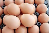 The Picture stack of fresh egg Container box. poster