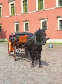 Brown horse with vintage carriage waiting in the old town for tourists poster