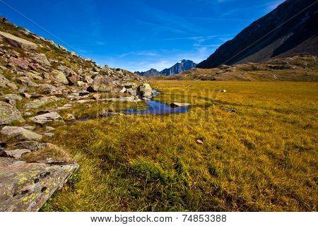 River by the high Moss - Stubai Valley - Austria