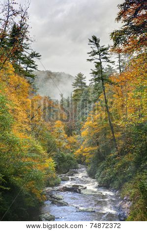 Scenic landscapes in Highlands NC