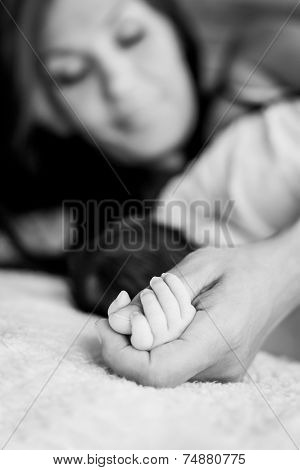 Baby Hand Gently Holding