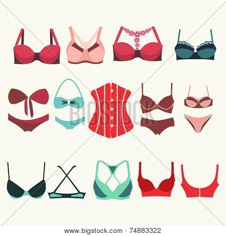 Different Types Of Bras - Illustration