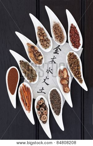 Chinese herbal medicine selection in porcelain dishes with five elements calligraphy script over dark oak background. Translation reads as five elements. Wu xing.