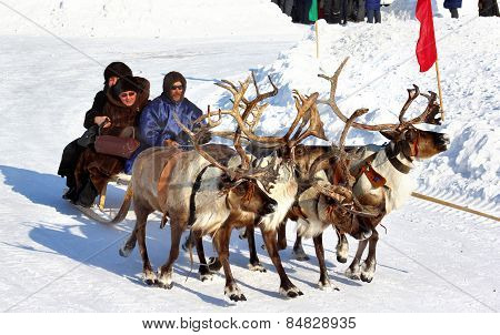 Holiday Of Peoples Of The North In Novyy Urengoy, Russia