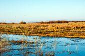 China's Inner Mongolia erguna wetlands in eerguna poster