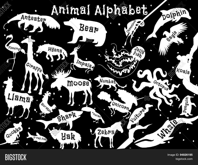 Animal Alphabet Vector & Photo (Free Trial) | Bigstock