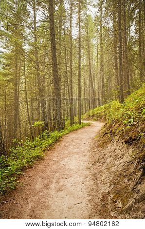 Rocky Mountains Hiking Trail