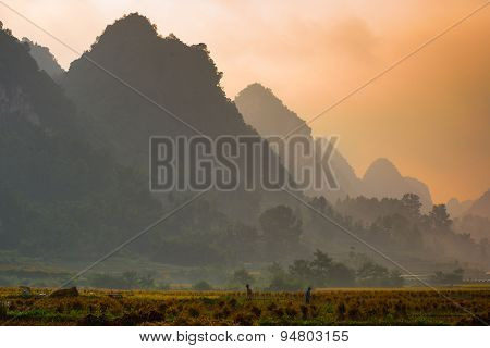 CAOBANG, VIETNAM, OCTOBER 5, 2014: Rice field in sunrise in Cao Bang, Vietnam. Caobang is North East province of Vietnam near China