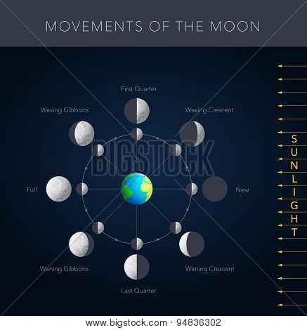 Movements of the moon vector