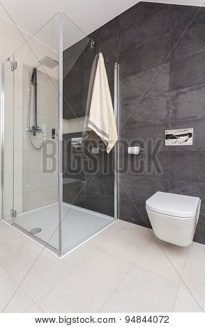 Shower Cubicle In Modern Toilet