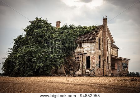 Abandoned Overgrown House With Graffiti