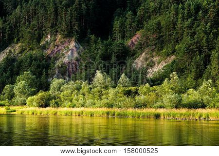 Summer forest with trees bushes and rocks lightened by sun are reflected in water surface of Dunajec river Slovakia. The river is border between Slovakia and Poland.
