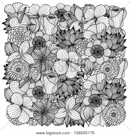 Floral background. Monochrome flowers and leafs on white background. Vector illustration.