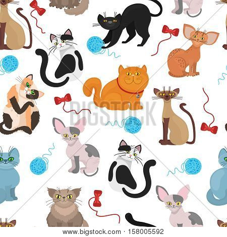 Fur cats pattern vector background. Color cat with tangle of threads. Illustration of domestic playful cat