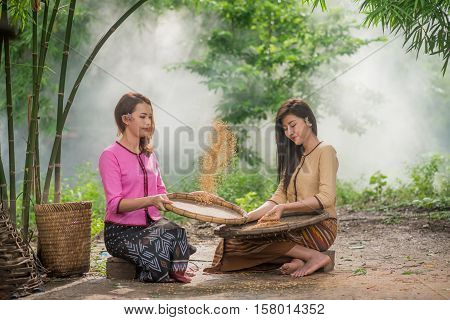 Beautiful Thai Asian Women Winnow Rice Separate Between Rice And Rice Chaff Identity . In Traditiona