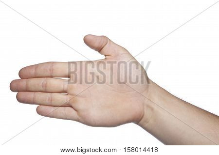 Open Hand On A White Background, Copy Space