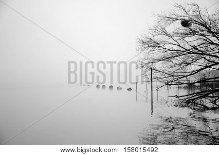 Scene on the river into foggy day. Barrels on water. Black and white photography