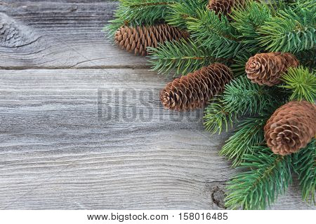 Christmas frame composed of pine cones and spruce branches on the background of old unpainted wooden boards; with copy-space