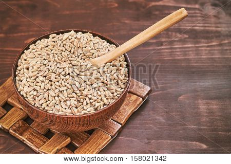 Spelt grain (dinkel wheat) in wooden bowl. Copy space