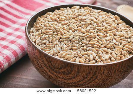 Spelt grain (dinkel wheat) in wooden bowl
