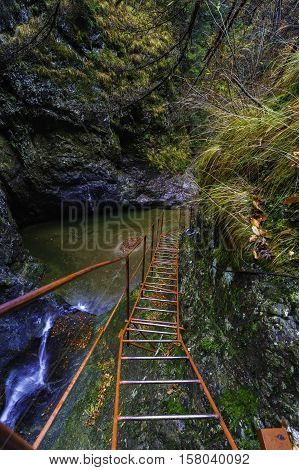 ladder near a waterfall on mountain trail