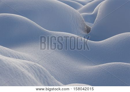 Beautiful Fresh Snowdrift Close Up. Deep Snow In Himalayas Mountains Looking Like White Dunes In A D