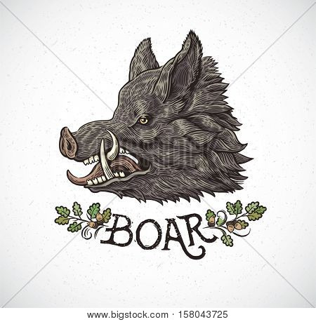 Boar head in graphic style and inscription, hand drawn illustration.