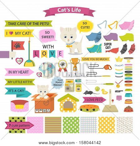 Vector cute cat with set of clothes and accessories, ribbon, speech babble and text.Cartoon vector cat animal isolated on a white background.Cat care, stuff and supply icons and pattern set