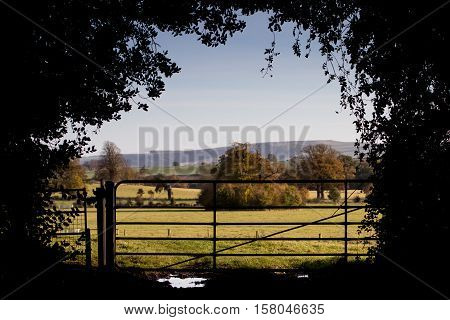 View over British Countryside with a Farm Gate and silouhette of leaves