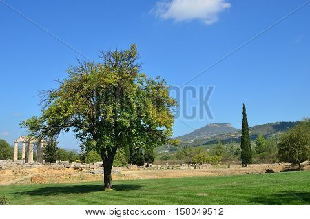 Classical greek landscape alone tree on a green lawn mountain and ruins of the temple of Zeus near ancient Nemea Peloponnese Greece