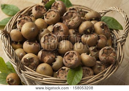 Fresh picked medlars in a basket
