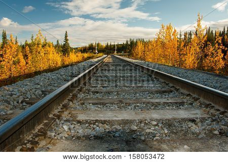 Autumn view of railway in Denali Np, Alaska
