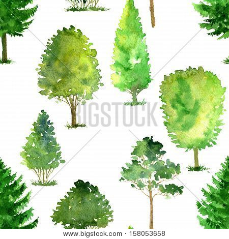 seamless pattern with watercolor deciduous trees, pines and firs, bushes and grass, abstract nature background, forest template, green foliage and plants, hand drawn illustration