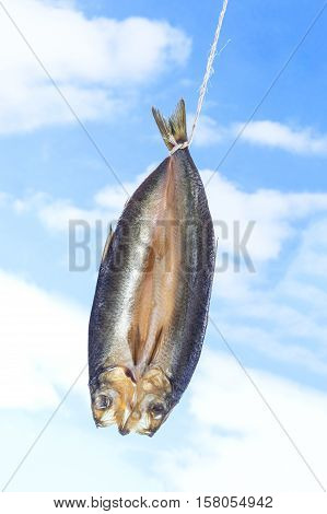 smoked kippered herring ion blue cloudy sky