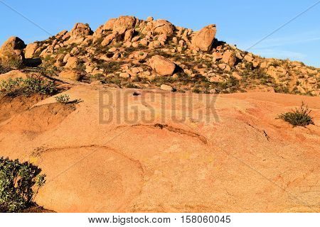 Rocky landscape with drought tolerant chaparral plants taken near Riverside, CA