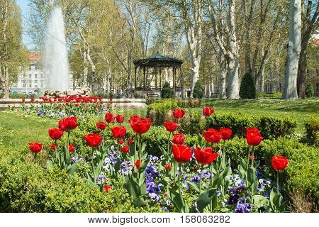Tulips and music pavilion in Zrinjevac park in Zagreb, Croatia poster