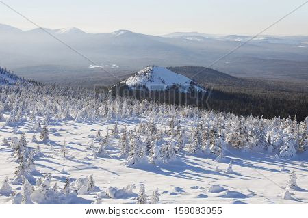 Mountain range Zyuratkul winter landscape. Snow swept spruces