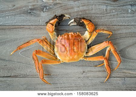 hairy crabs, chinese cuisine, autumn winter delicacy
