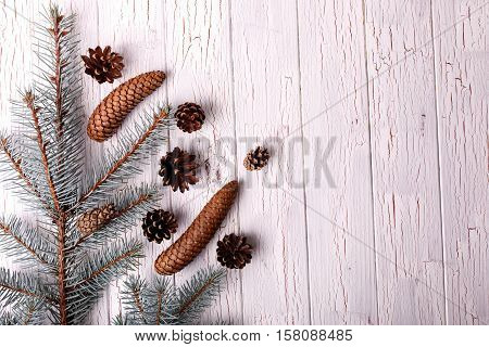 Brown Cones And Spruce Twigs Lying On White Floor