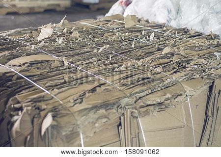 cardboard piled and baled up for recycling