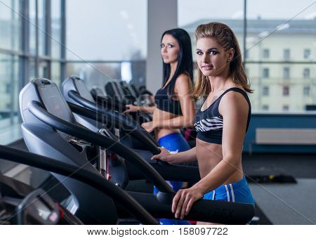 Sexy fit women running on treadmills in modern gym. Healthy young young girls doing running exercise on treadmill in gym