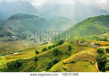 Sunlit Green Rice Terraces At Highlands. Sa Pa District, Vietnam