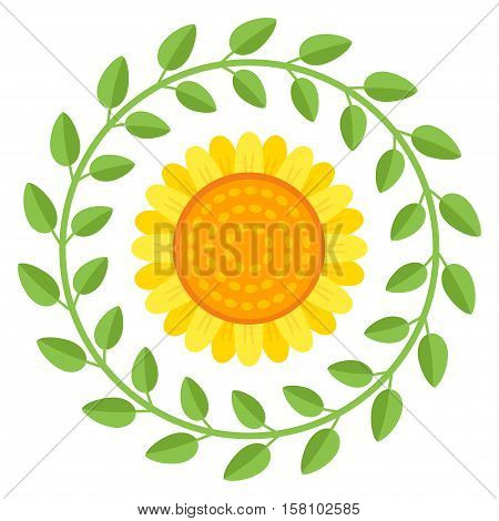 Beautiful sunflower isolated on a white background. Vector abstract natural flower background.
