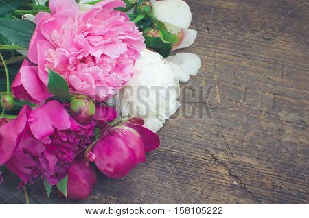 Peony background. Fuchsia pink and white peonies on wooden table with place for text. Spring flower peony. Happy Mothers Day. Mother's Day greetings card. Mothers Day gift. Copy space. Toned image.