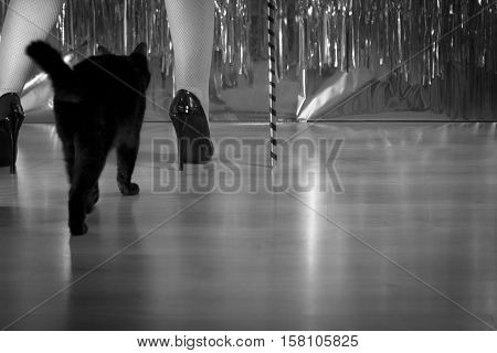 Woman in black high-heeled patent leather shoes