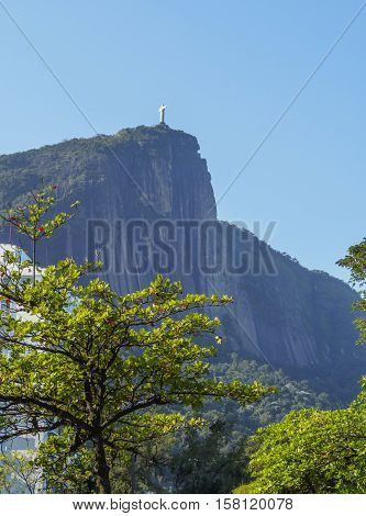 Brazil City of Rio de Janeiro Zona Sul Corcovado and Christ Statue viewed through the trees of the Botanical Garden. poster