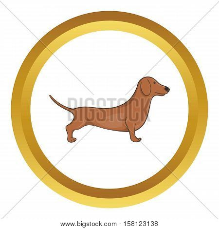 Brown dachshund dog vector icon in golden circle, cartoon style isolated on white background