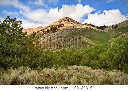 Landscape over hill at Inyo National Forest Park California USA