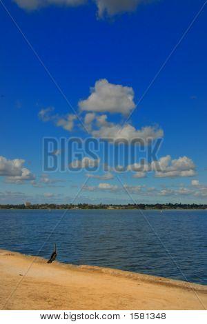 Blue skies Swan Riven in Perth Western