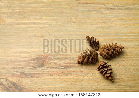 Four brown cones aligned in a cross shape on a office desk with empty copyspace. Background, nature, forest, conifers.
